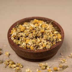 Kamillen - Blüten