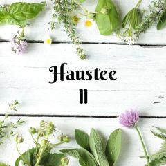 Haustee II